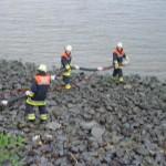 Eine Saugleitung wird zu Wasser (Elbe) gebracht.