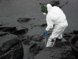 Ein freiwilliger Helfer im Ölschlamm (Foto: BF HH)