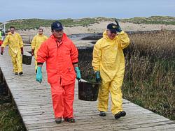 Helfer beim Abtransport von Ölschlamm (Foto: BF HH)