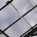 Scheibenreste hängen bedrohlich in den Glasdächern. Foto: Michael Hammerich - FF Lokstedt