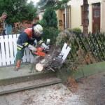Immer wieder das gleiche Spiel: umgefallene Bäume wurden mit der Motorkettensäge zerkleinert, um Straßen und Wege frei zu machen<br>© FF Stellingen<br>