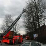 Teilweise gemeinsam mit den Kollegen der Berufsfeuerwehr wurden umgeknickte Äste und Bäume beseitigt<br>© FF Stellingen<br>