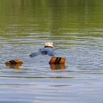 Ein Taucher treibt bewußtlos an der Wasseroberfläche.