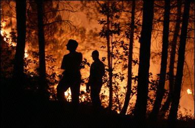 Dieser verheerende Feuersturm kostete 11 Feuerwehrleuten das Leben<br>(Foto: Pedro Armestre / AFP)
