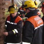 Bevor der Baum fällt, besprechen Wolgang Neustadt,Ausbilder Peter Timmann und Thomas Klüver die Vorgehensweise.