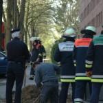 Die Führungsdienste der Feuerwehr: B-Dienst, Zugführer Billstedt und der Umweltdienst.