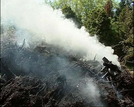 Rauch steigt aus dem Komposthaufen.(Urheber:www.nonstopnews.de)