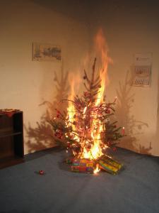 Dann vergehen oftmals nur wenige Sekunden und der gesamte ausgetrocknete Baum steht in Flammen.  Copyright LFV Schleswig-Holstein
