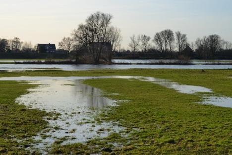 Bei Tageslicht zeigt sich: Die Wasser der Dove-Elbe hat nahezu das selbe Niveau, wie die den Fluss umgebenden Wiesen