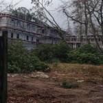 Umgestürzter Baum auf ein Neubaugebäude - Vor Ort war die FF Eidelstedt