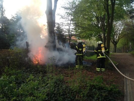 (C) FF Stellingen: brennt Gebüsch